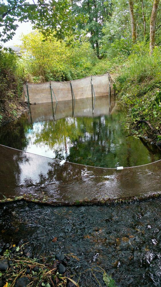 Lacamas Fish Barrier | MJ Hughes Construction