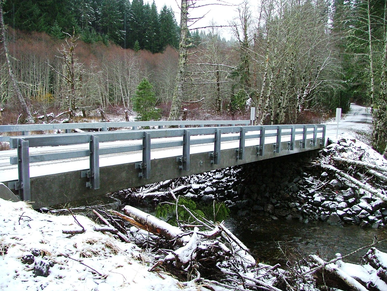 Nestucca River Bridge